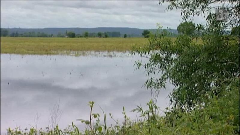 Há mais de um ano que o rio Tejo não tinha caudais tão elevados