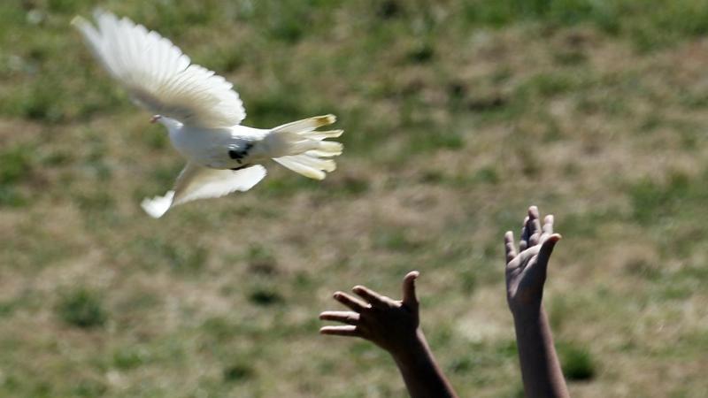 Um sinal de paz