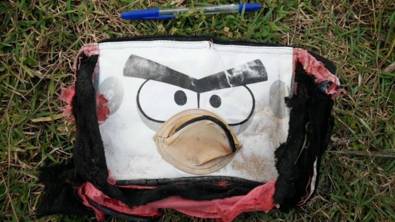 MH370: americano encontra bens que podem pertencer aos passageiros