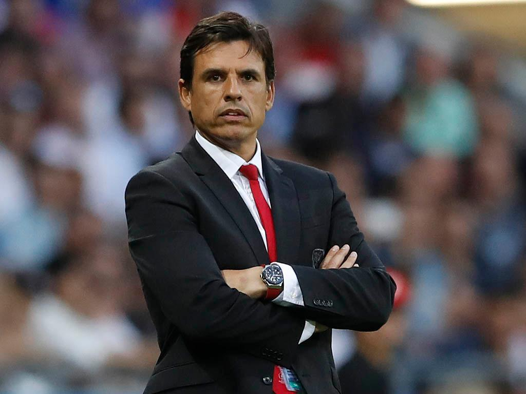 Chris Coleman (Reuters)