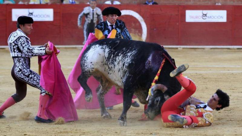 Toureiro morre depois de ser colhido por touro em Espanha