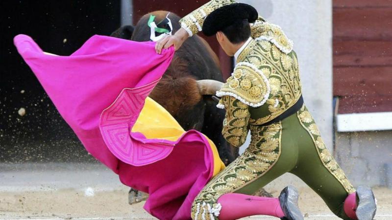 Touro mata toureiro espanhol