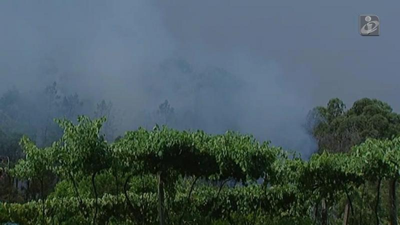 Barcelos: incêndio coloca casas em risco