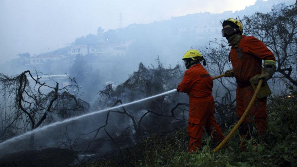 Incêndio em São Roque, Funchal