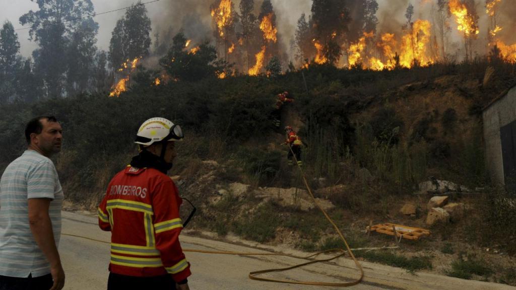 Incêndio em Viana do Castelo