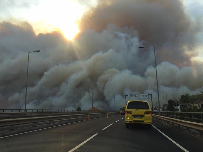 Eu vi: Incêndio na Madeira (Foto enviada por Cláudia Belim)