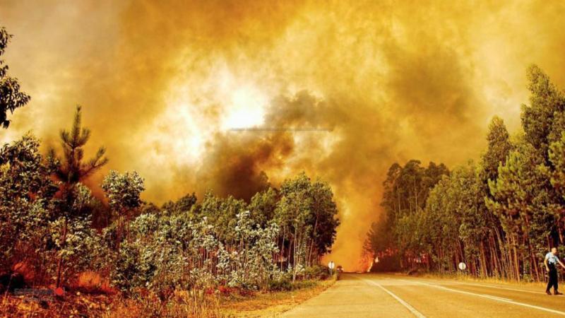 Eu vi: Incêndio em Águeda (Foto enviada por Patrícia Santos)