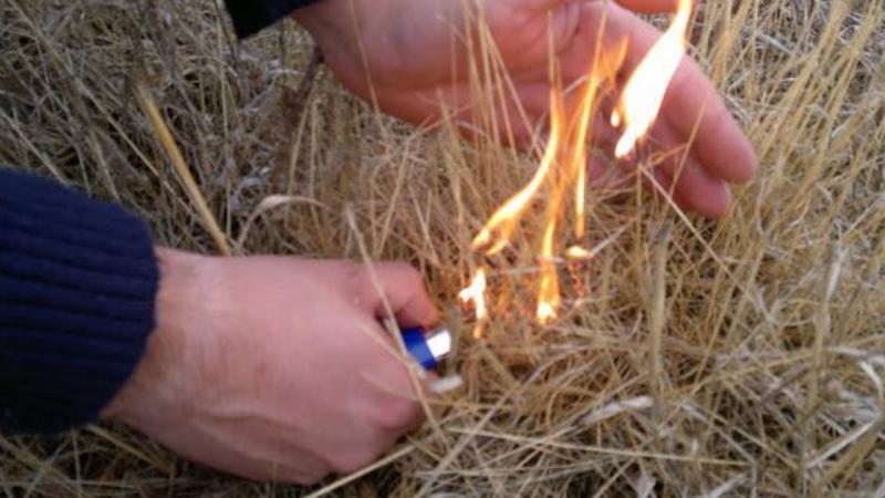 Incendiário