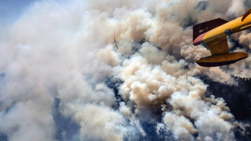 Piloto espanhol a combater incêndio em Viana do Castelo