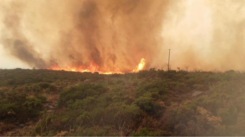 Eu vi: incêndio em Paredes de Coura (foto enviada por José Pereira)