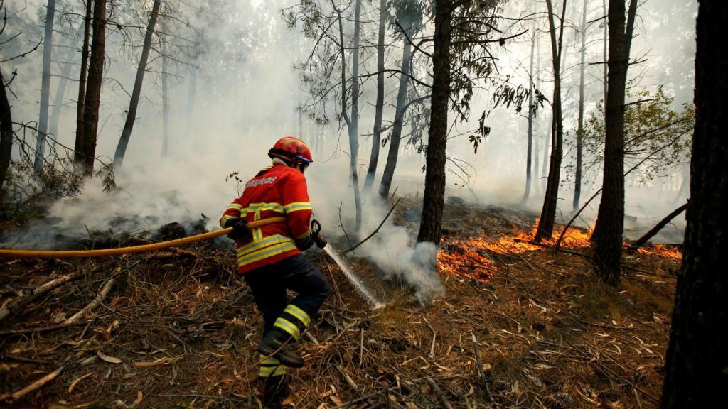 Incêndio em Águeda
