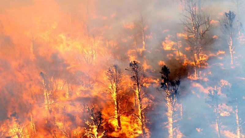 Grandes incêndios assolam a Califórnia