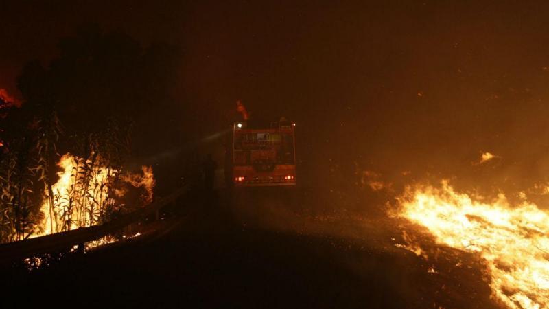 Bombeiros combatem chamas em Abrantes e no Sardoal