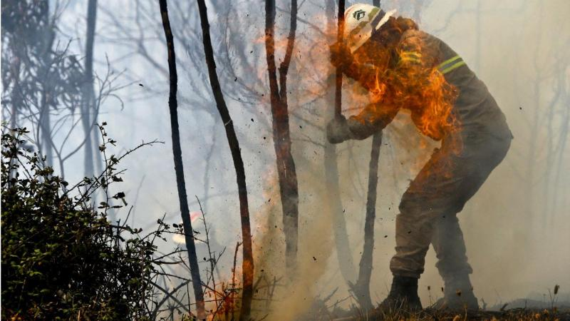 Incêndio na Serra de Monchique