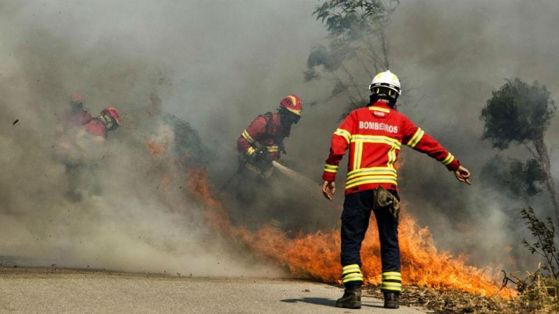 Resultado de imagem para Quase 150 bombeiros combatem chamas em Mangualde