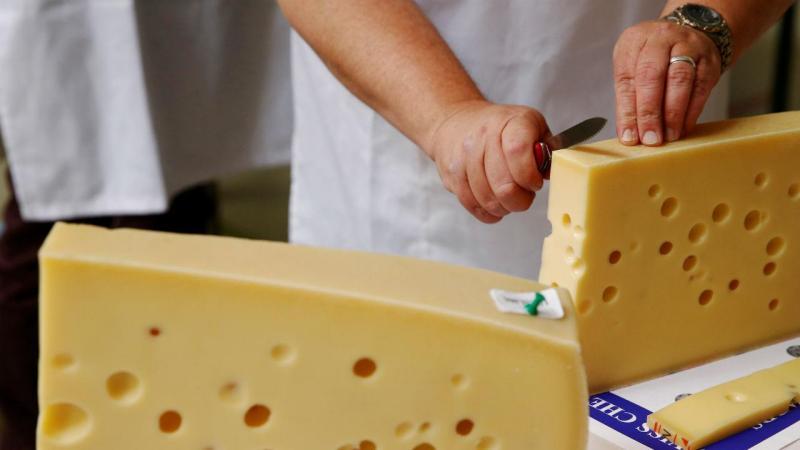 Em busca do melhor queijo suíço