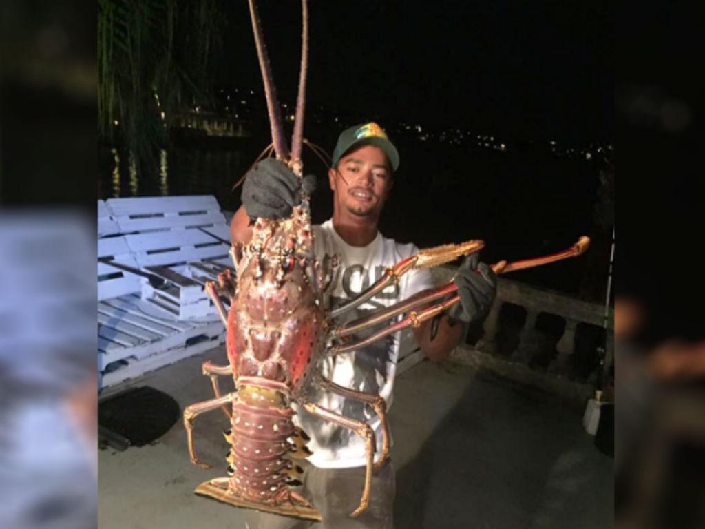 Pescadores capturam lagosta gigante nas Bermudas