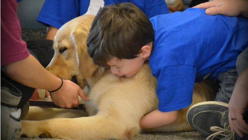 Criança autista permite que lhe toquem depois de conhecer este cão