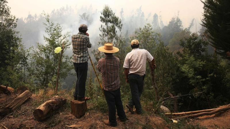 Mais de nove mil pessoas combatem incêndios no Chile.