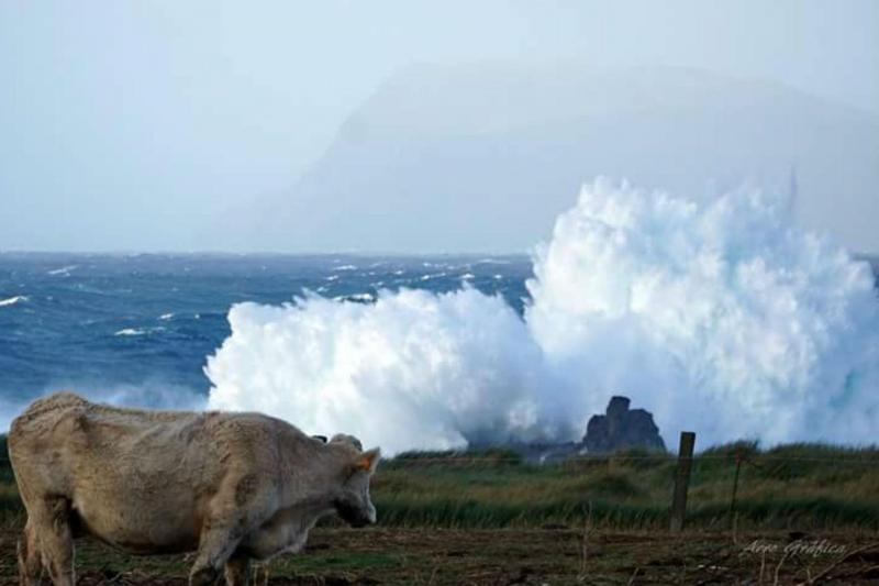 Mau tempo na ilha das Flores, Açores