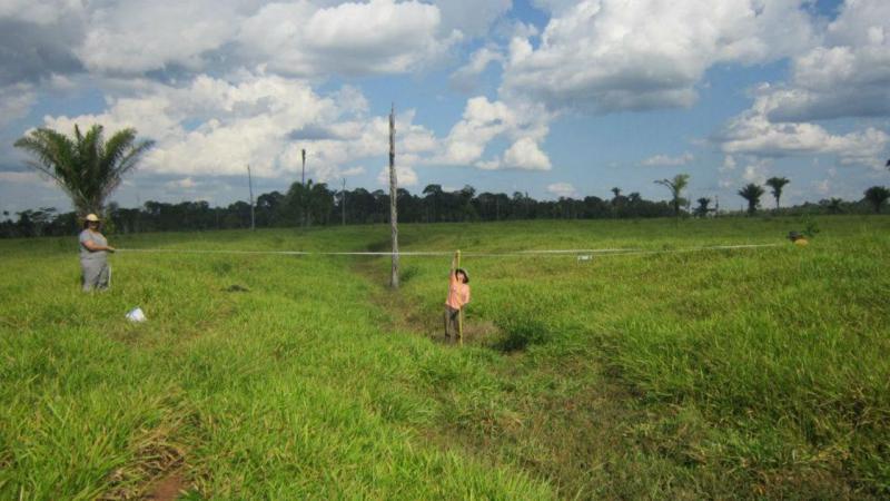 Geoglifos descobertos na Amazónia
