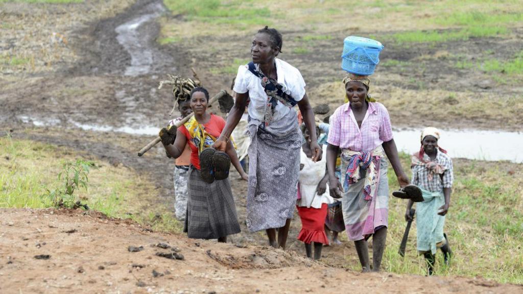 Culturas em perigo em Moçambique