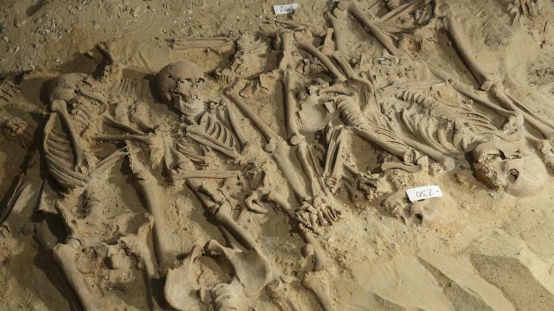 Esqueletos (arquivo)
