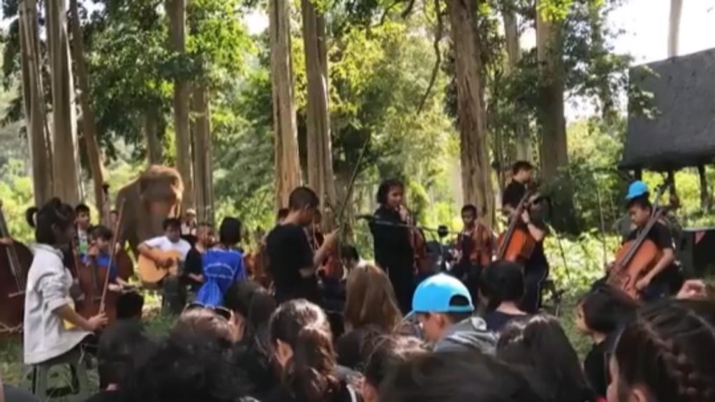 Orquestra de cegos da Tailândia