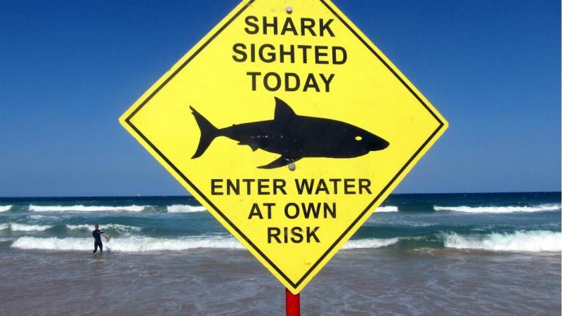 Aviso tubarão - Austrália