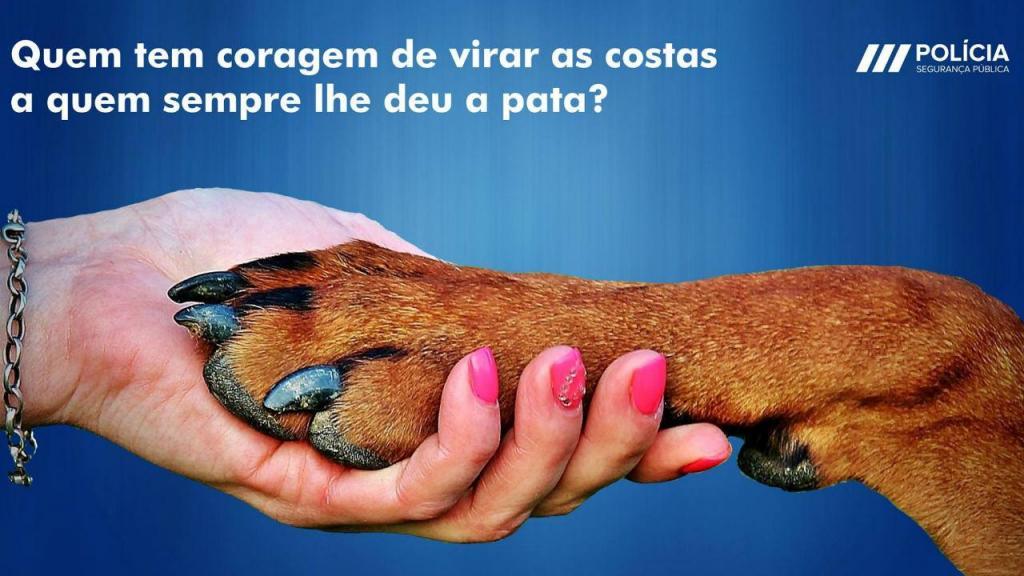 Campanha da PSP contra maus-tratos e abandono de animais