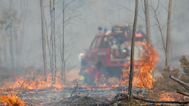 Incêndios devastam centro do país