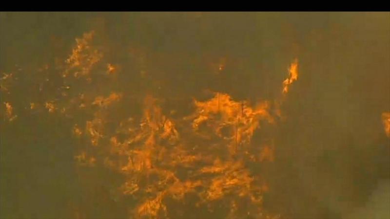 Fogo parecia morto, mas reacendeu em Pampilhosa da Serra