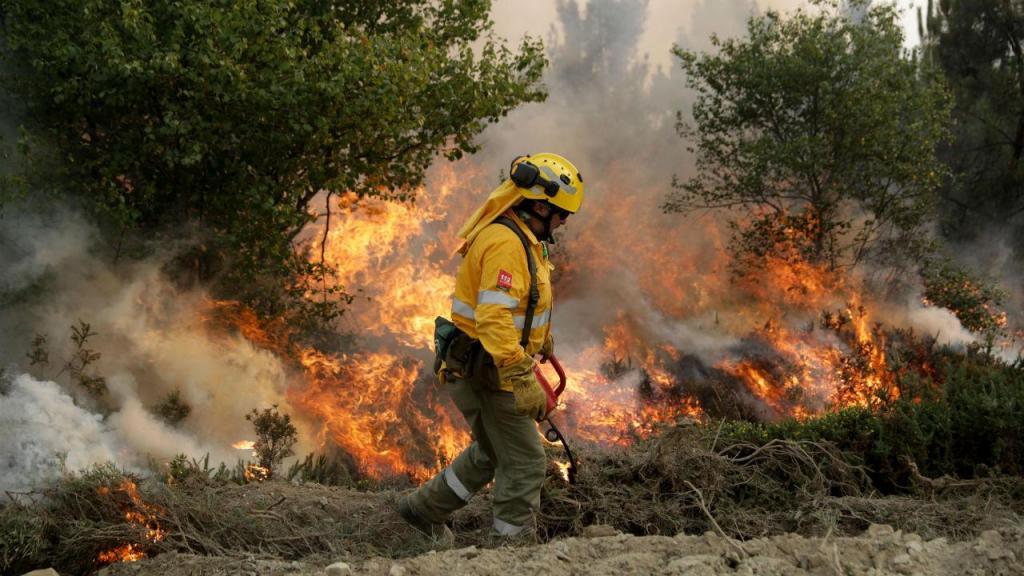 Incêndio no distrito de Coimbra