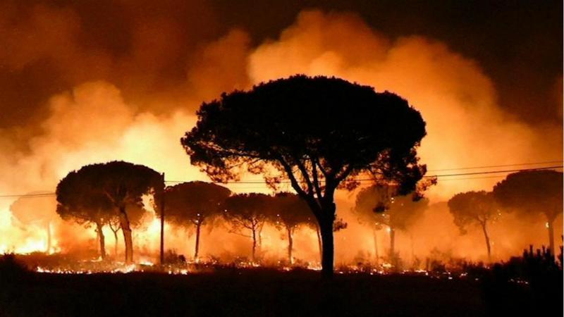 Resultado de imagem para Incêndio leva à retirada de 400 pessoas de casa em Espanha