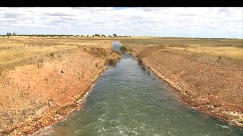 Seca severa obriga agricultores a pedir ajuda