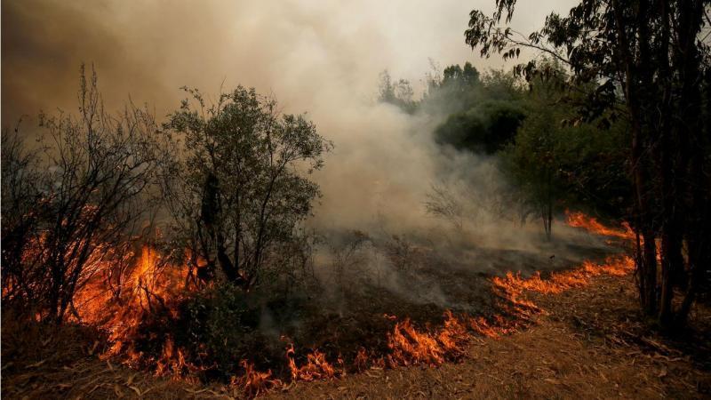 Incêndio em Castelo Branco