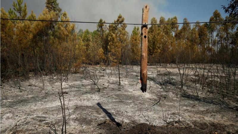 Incêndio em Gavião