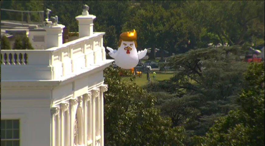 Donald Trump em forma de galinha