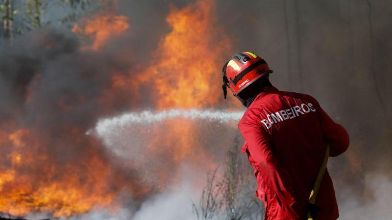 Incêndio na Mealhada