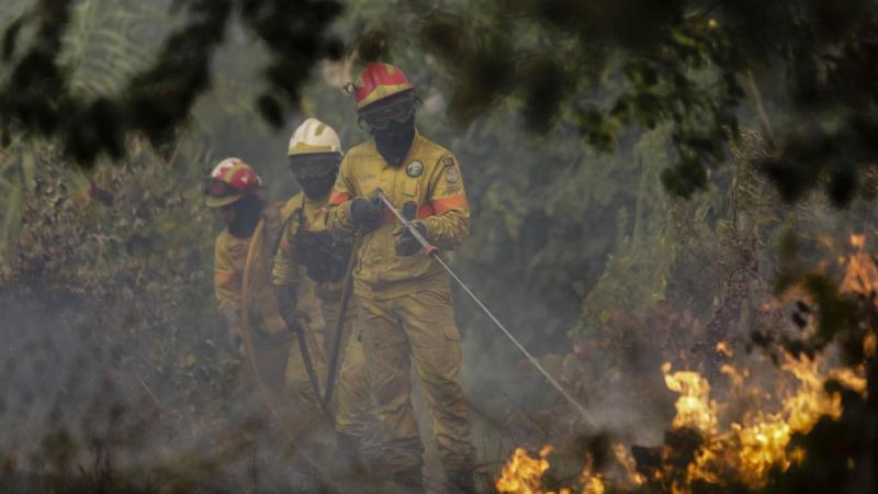 Incêndio em Cantanhede