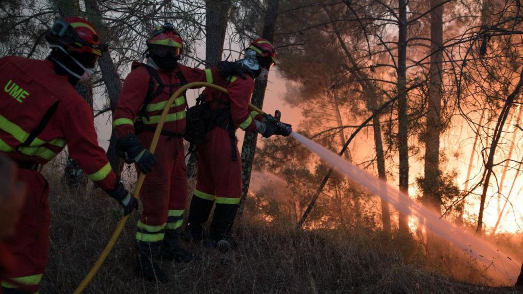 Incêndio em Vila do Rei