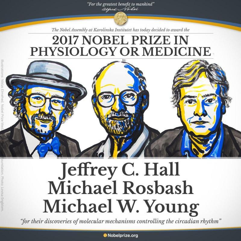 Nobel da Medicina 2017