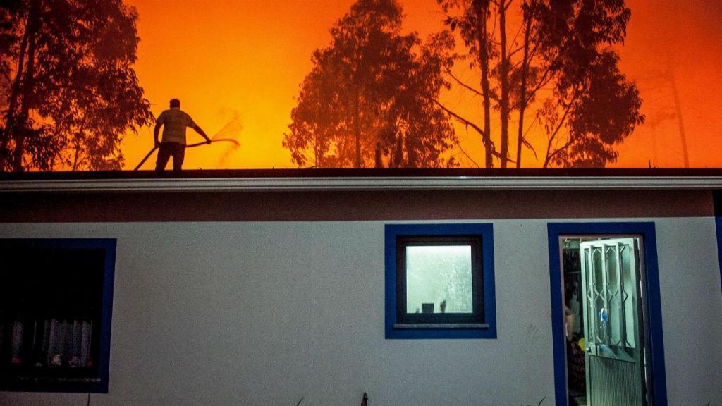 Incêndio em Vieira de Leiria
