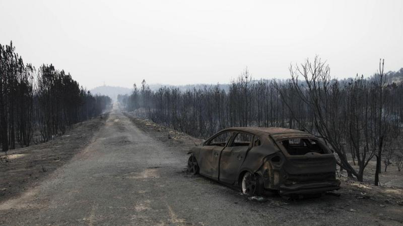 Consequência do incêndio em Vieira de Leiria