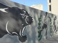 Mural do Boavista (foto: BFC)