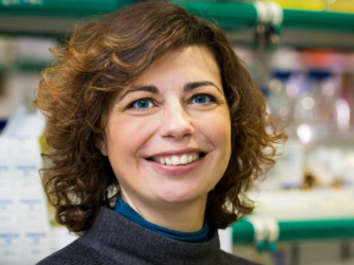 Mónica Bettencourt Dias
