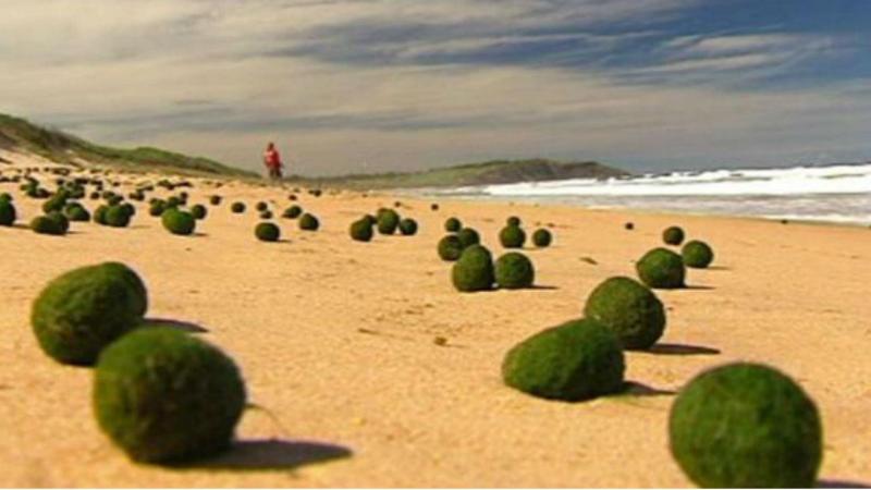 Bolas misteriosas em praias australianas