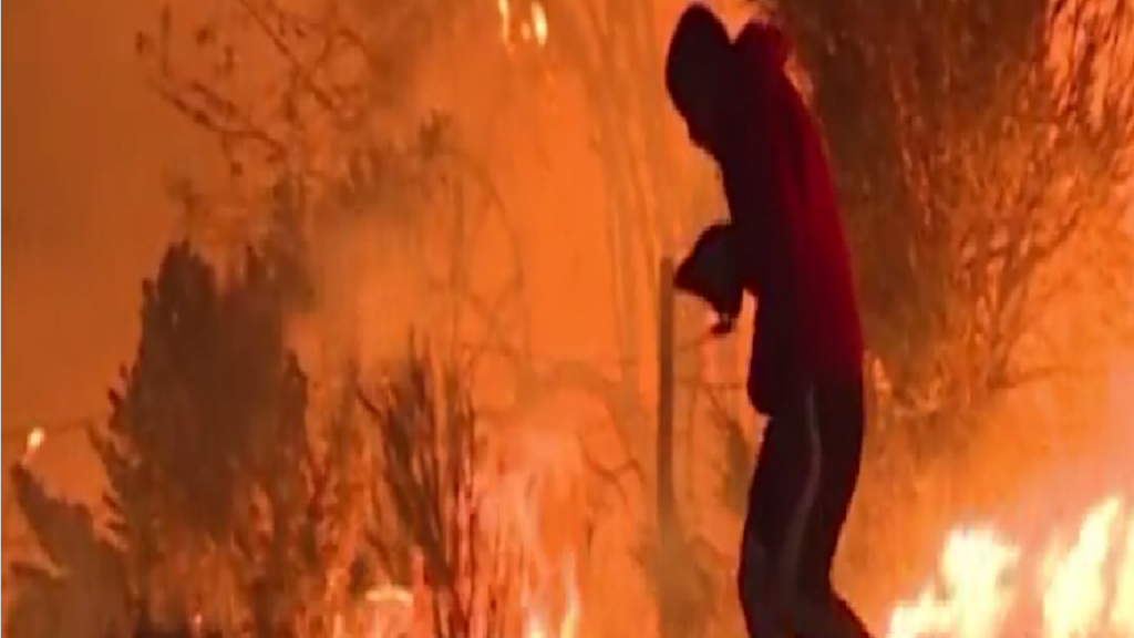 Homem salva coelho do meio das chamas