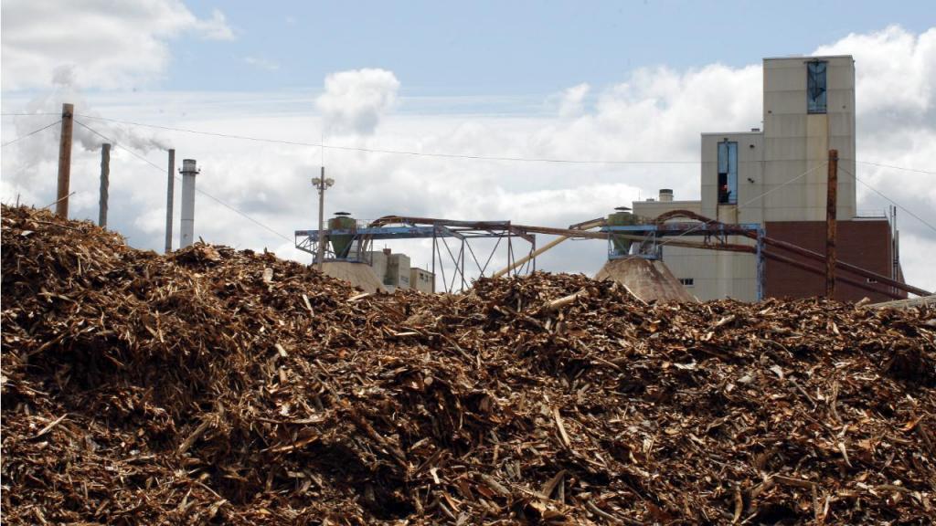 Biomassa - Central (arquivo)
