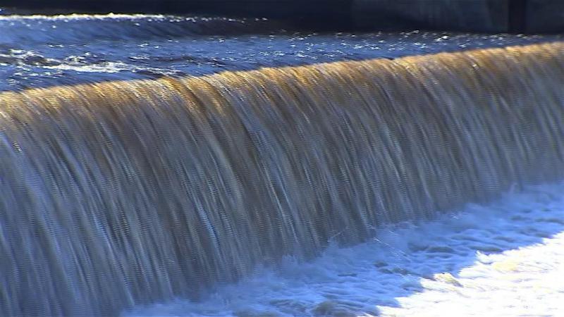 Ministério Público investiga avarias em celulose que podem estar a contaminar o Tejo